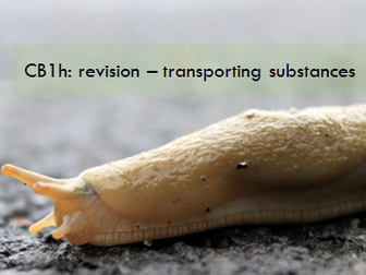 CB1h - revision - transporting substances
