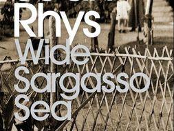 Genre in Wide Sargasso Sea
