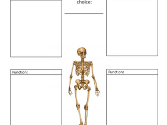 Coordinates Ks2 Worksheet Word Gcse Pe Aqa New  Muscular  Skeletal System By Jpridmore  Primary And Secondary Colors Worksheet Pdf with 3rd Grade Punctuation Worksheets Excel Gcse Pe Aqa  Functions Of The Skeleton Camera Shots Worksheet Pdf