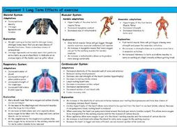 GCSE PE – Edexcel (9-1) – Long Term Effects of Exercise - Knowledge Organiser/Revision Mat
