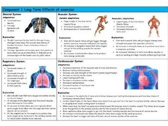 GCSE PE – Edexcel (9-1) – Long Term Effects of Exercise - Knowledge Organiser/Revision Mat