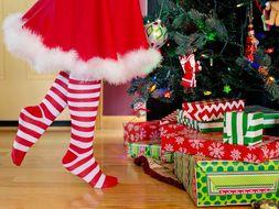 Christmas: Functional Skills English Reading - Entry Level 2