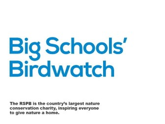 Big Schools' Birdwatch introductory power point and notes