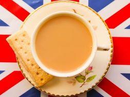 ESL  British Culture Bundle