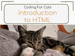 Learn HTML Lesson Packs | Coding For Cats