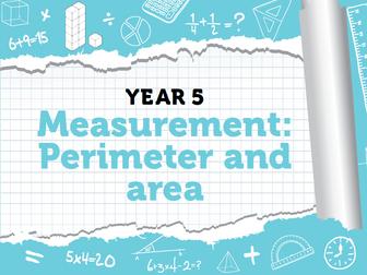 Year 5 - Week 11 - Perimeter and Area