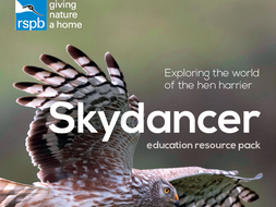 Skydancer- supporting resources (session 1)