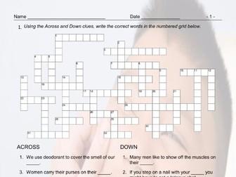 Body Parts Crossword Puzzle