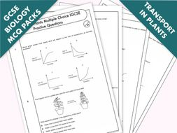 GCSE Biology: Multiple-Choice Topic Question Pack On Transport in Plants