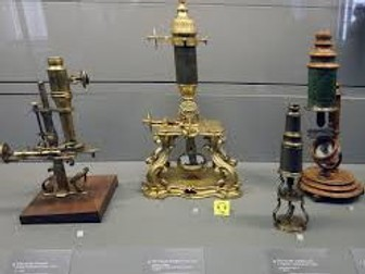 Microscopes - magnification and scale