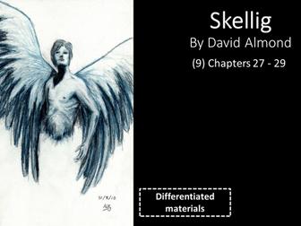 KS3: Skellig (9) Chapters 27 to 29