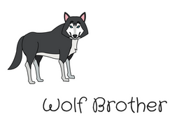 Wolf Brother Reading Comprehension by