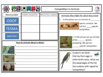 Competition in Animals CLF Lesson & Resources - Lesson 4 - KS2 KS3 KS4 BIOLOGY