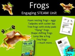 STEAM - Biomimicry for Young Children - Frogs