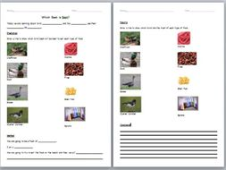 Lesson Plan, Presentation and Worksheet for Whole Class Bird Beak Science Experiment