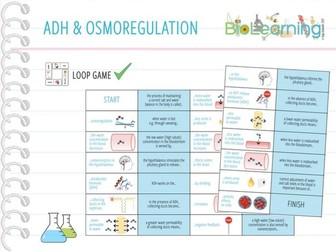 ADH and Osmoregulation - Loop Game (KS4/KS5)