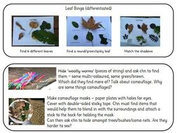 Forest School Activities - Ideas for Outdoor Learning in EYFS and beyond