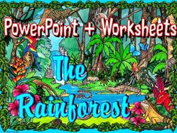 the rainforest worksheets and powerpoint by mariedp teaching