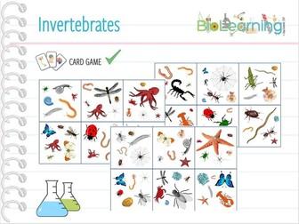 Invertebrates - CARD GAME