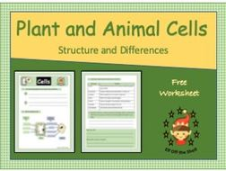 KS3 Plant and Animal Cells Structure and Differences ...
