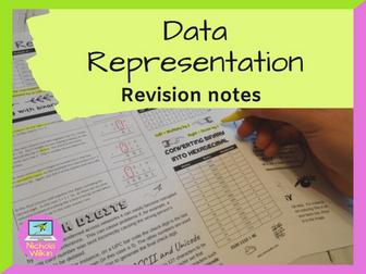 Data representation revision