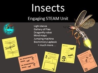 Project Based Learning, Insects, Lapbook - STEAM, Biomimicry, KS1, NGSS