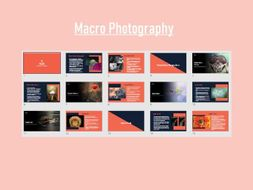 Macro Photography Powerpoint Presentation