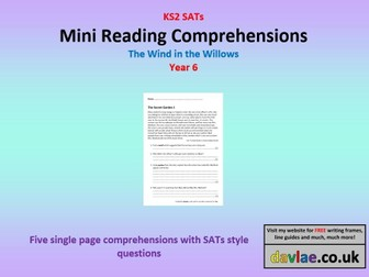 Mini Reading Comprehensions - The Wind in the Willows