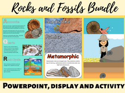 Rocks classroom display, PowerPoint and fossil formation activity