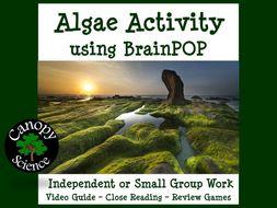 Algae Activity using BrainPOP
