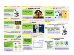AQA new specification-B1-Cell structure and transport-complete bundle