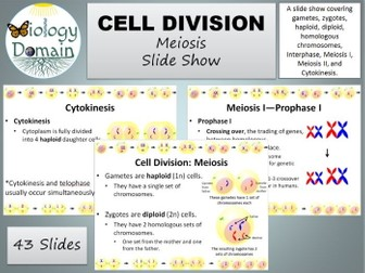 Cell Division: Meiosis Slide Show