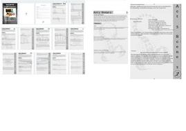 Macbeth-Graphic-Organiser.pdf