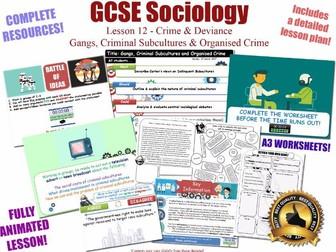 Cohen, Criminal Subcultures & Gangs - Crime & Deviance L12/20 [ AQA GCSE Sociology - 8192] New Spec