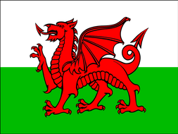 Saint David's Day Presentation and Colouring Activities