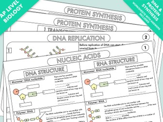 A Level Biology Worksheet Pack on DNA and Protein Synthesis