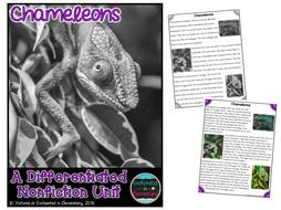 Differentiated Nonfiction Unit: Chameleons
