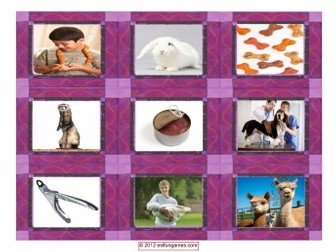 Pets & Pet Care Cards 4 Pages = 36 Cards