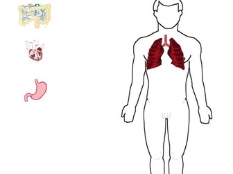 Drag & Drop organs