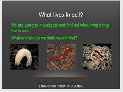 ROCKS (INTRODUCTION TO SOILS)