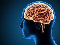 Metaphysics of Mind - Mind Brain Type Identity Theory - AQA A Level Philosophy Entire Topic