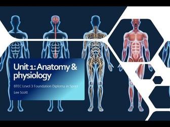 Unit 1 - Anatomy & physiology (BTEC Level 3 Sport)