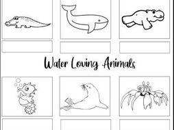 Water Loving Animals Worksheets
