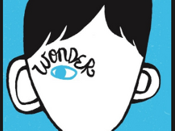 "Allusions, Google Expedition to the Moon, and ""Write Around"" Strategy using R.J. Palacio's Wonder"
