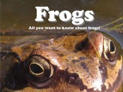 Frogs: An Easy Reader