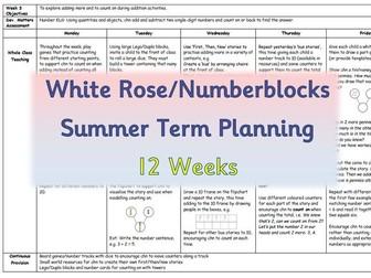 Summer Term Maths Planning - EYFS