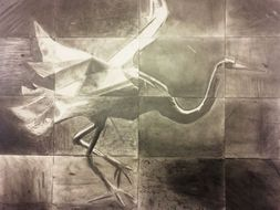 Crane gridded for tonal work