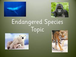 Endangered Species Cross Curricular Topic Planner