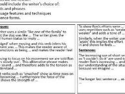 8700 AQA Paper 1 writing frames - animals practice paper
