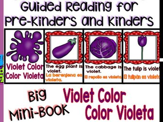 Guided Reading - Violet Color / Color Violeta - Dual
